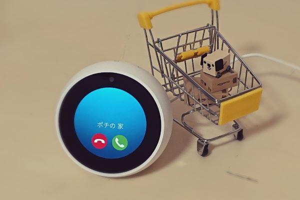 【写真】Amazon Echoで電話 音声やビデオ通話のやり方を詳しく解説