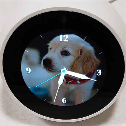 Echo Spot,Echo Showホーム画面を複数の写真で切替て表示する方法