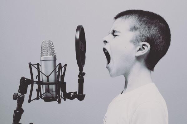 Googleに保存された音声アクティビティを削除する方法